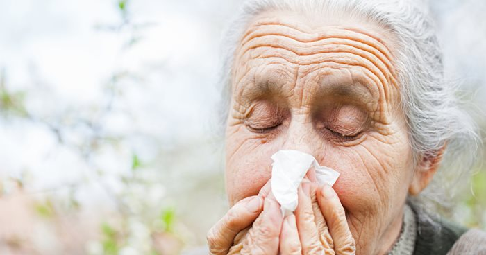 Helping Your Loved One Cope with Springtime Allergies