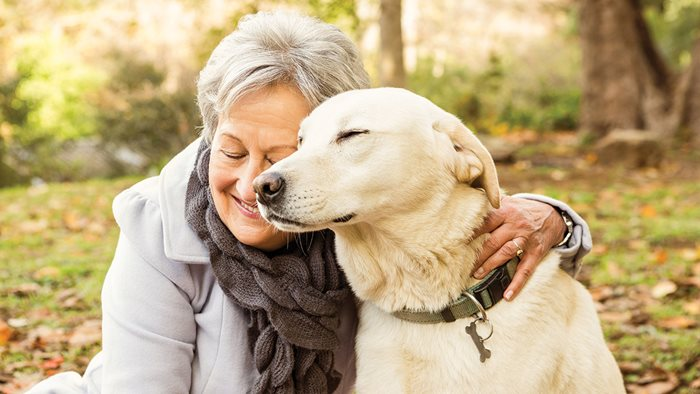 Should you get your elderly parent a pet?